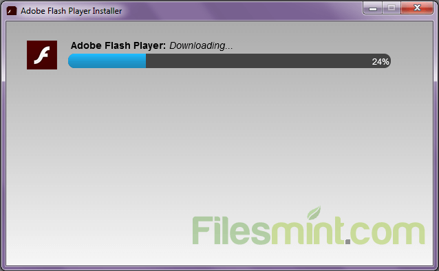 Adobe Flash Player Screenshot
