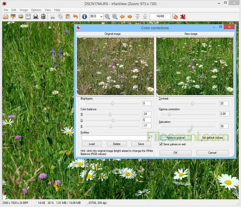 IrfanView Screenshot