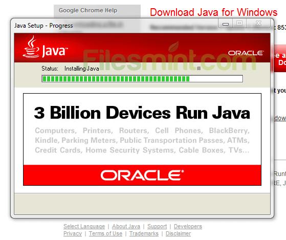 Java Runtime Environment Installation