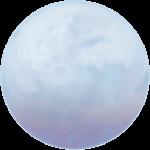 Pale Moon Logo