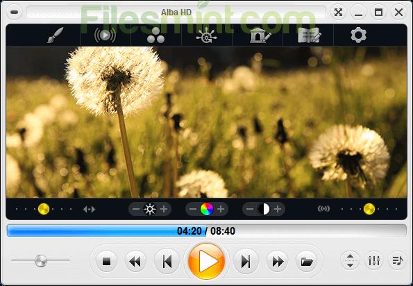 Zoom Player Screenshot